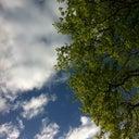 axel-friedland-5507686