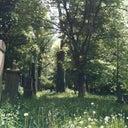 stefan-romer-12086390