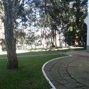 mauricio-kunst-22983598