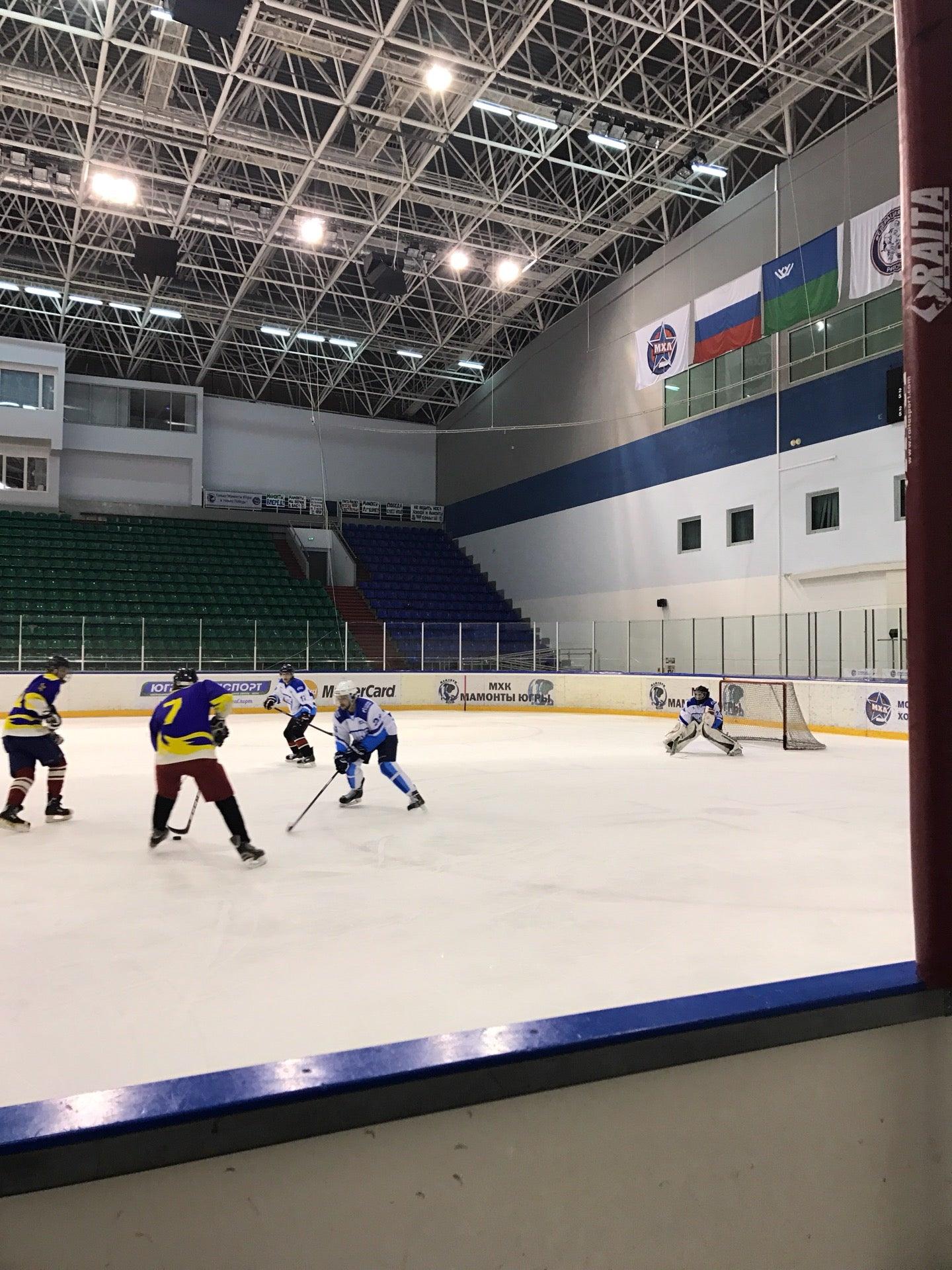 ледовый дворец спорта фото описанию топа