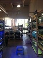Noah's Ark Pet Shop