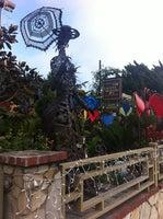 Laguna Nursery