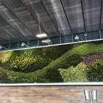 The remodel of this international airport made traveling in & out of here easy. Look out for these brilliant green walls.
