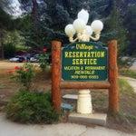 Village Reservation Service