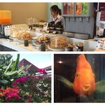Courtesy corners with free drinks, cakes, coffee at gates 6, 7. Aquarium in restrooms. Nice tropical garden around.