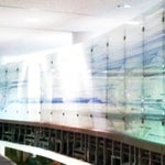 Check out the  architectural glass throughout T5 designed by Thirst Design & Epstein Architects and made by Goldray Industries. It's really beautiful.