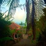 Foto Ubud View Bungalows, Ubud