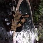 Foto villa bunga's, Bandjarbaru