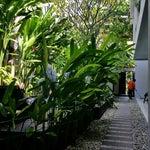 Foto The Pavilion Kuta hotel, Kuta