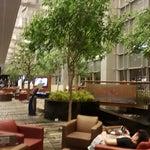 Есть бассейн, душевые кабины. Есть парк подсолнухов, бабочек, зоны отдыха с возможностью зарядки телефонов, у кого длительная пересадка могут съездить на бесплатную экскурсию по Сингапуру. Free WiFi.