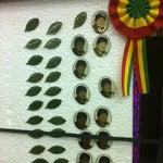 Llévate un pin de Evo del gift shop :)