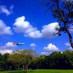🗣2018'de havaalanın ✈️kalkmasıyla burayı lütfen ağaçlandırın⚠️ Atatürk❣️Ormanı veya Parkı yapılmasını talep ediyorum‼️✌🏽