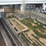 Concourse C has these pristine vaguely Japanese gardens that seem cruise shippishly manicured by underpaid men. Yet there is no entrance onto them whatsoever. Add it to the list of DEN conspiracies.