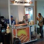 Los flying dogs (panchos) de tocumen son los mas ricos. Ese es mi panchero de confianza!!!