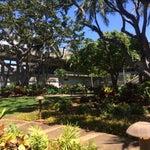 Take break in the gardens before your flight!