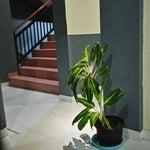 Foto Hotel Astiti, Kupang