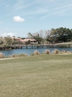 Palm Cove Golf Club