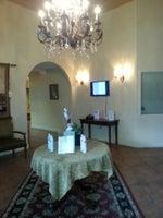 Grapevine Salons