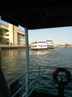 Marco Polo Cruises - Cabana