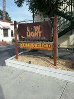 Low Light Salon