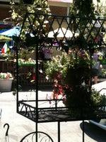 Italian Market Florist