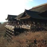 清水の舞台 (清水寺本堂)