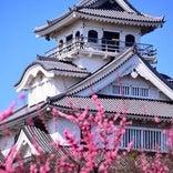 長浜城 (長浜城歴史博物館)