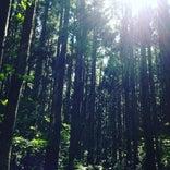 五頭山麓いこいの森キャンプ場