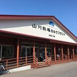 山川牧場自然牛乳 直営工場売店