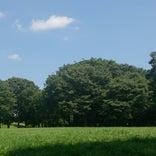 神代植物公園 自由広場