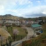 つばきの丘運動公園