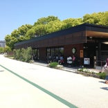 Starbucks Coffee 福岡大濠公園店