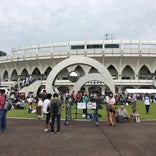 富山市民球場 (アルペンスタジアム)