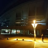 埼玉スタジアム2002 ホーム自由席 北ゴール裏