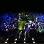 牛岐城趾公園