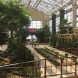 花のミュージアム フローリィ