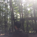 Forest Adventure Fuji