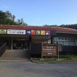 やんばる野生生物保護センター ウフギー自然館