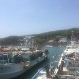 津屋崎漁港