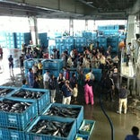 気仙沼市魚市場