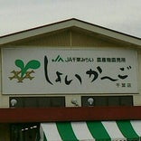 しょいか〜ご 千葉店