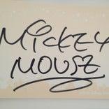 ミッキーの家とミート・ミッキー