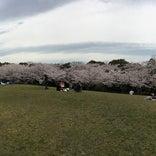 八ツ面山公園