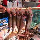 角上魚類 前橋店