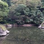 月不見の池