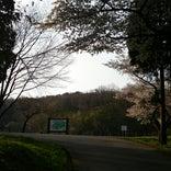 石川県森林公園 三国山キャンプ場