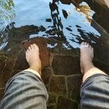 モリの足湯