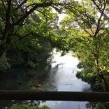 柿田川公園第一展望台