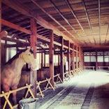 彦根城 馬屋