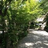 旅館 山みず木